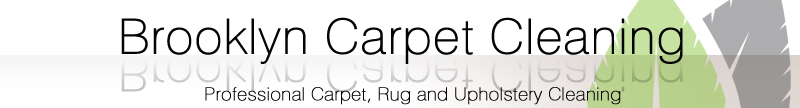 Brooklyn Organic Carpet Cleaning